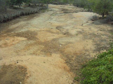 Leitos secos de rios evidenciam a intermitência das águas do semiárido e a chamam a atenção para a melhor distribuição do recurso. Foto: Liliana Peixinho.