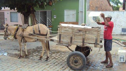Carroça leva água de casa em casa. Foto: Liliana Peixinho.