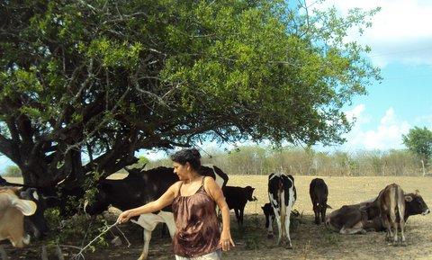 Sertão Adentro, a jornalista socioambiental, Liliana Peixinho, interage com os animais. Foto: Liliana Peixinho.