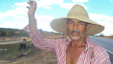 Seu Elísio, na estrada, guia as poucas cabeças de gado que resistiram à estiagem. Foto: Liliana Peixinho.
